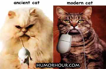 The difference between the ancient and the modern cat